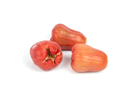 Front focus Rose apples or chomphu isolated on white background Banco de Imagens