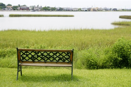 Bench over the green grass on the lake, peace metaphor photo