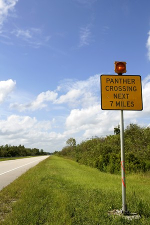 Signal about panther crossing road, Everglades National Park, blue sky photo