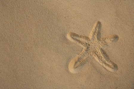 Starfish footprint over caribbean sand, vacation concept photo