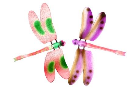drago alato: due coloratissimi insetti libellula battenti isolati su bianco