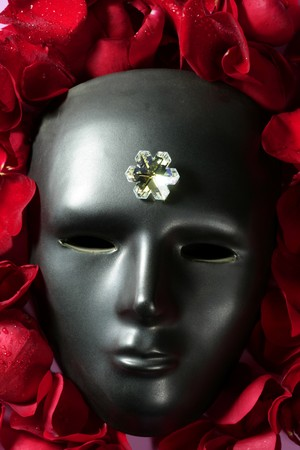 Black carnival mask with red rose petals around photo