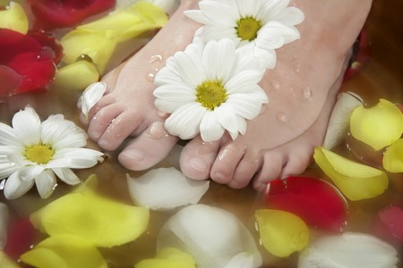 Aromatherapy, flowers children feet bath, colorful rose petal Stock Photo - 4566693