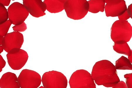 Red rose petals frame, border with white copy space Stock Photo - 4575074