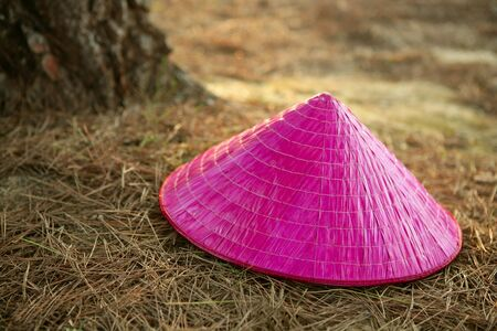 Chinesse pink girl hat over the forest brown floor photo