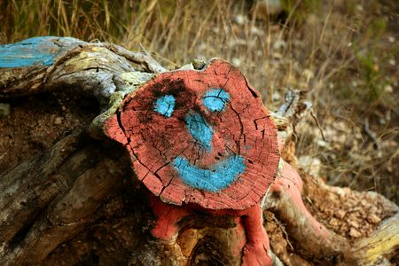 face in tree bark: Smiley face draw in a cutted trunk, forest conservation metaphor Stock Photo