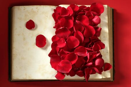 Rose petals over old aged book, red background Stock Photo - 4763203