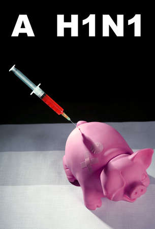 epidemic: Injection to a pig,A h1n1 vaccine health metaphor