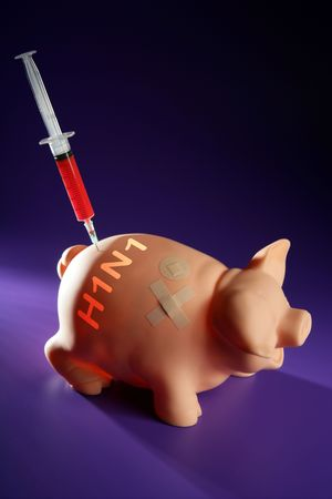h1n1 vaccine: Injection to a pig,A h1n1 vaccine health metaphor
