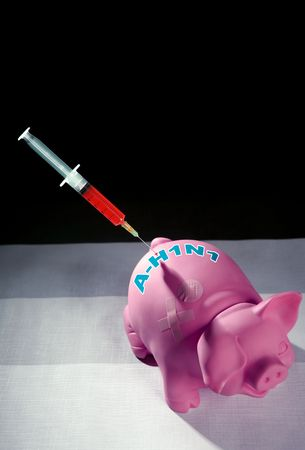 h1n1 vaccine: Pig  influenza flu Injection, A h1n1 vaccine metaphor Stock Photo