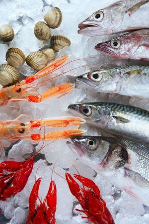 fish store: Lubina, caballa, merluza pescado, cigalas, almejas y cangrejos de mar Foto de archivo