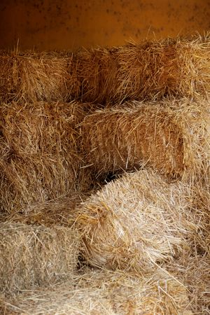 Golden straw barn stacked on the farm Stock Photo - 5060052