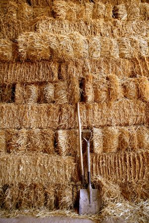 Straw golden bale barn stacked, shovel and rake tools Stock Photo - 5060029