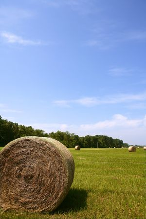 Golden Straw Hay Bales in american countryside on sunny day Stock Photo - 5140209