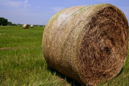Golden Straw Hay Bales in american countryside on sunny day photo