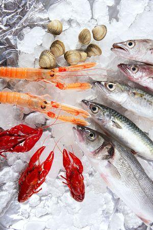 fish store: Lisa, caballa, peces de merluza, nephrops, cangrejos y almejas de mariscos  Foto de archivo