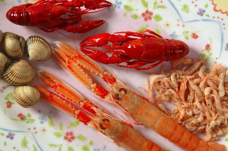 Raw seafood on the plate, nephrops, crabs, clams and shrimps photo