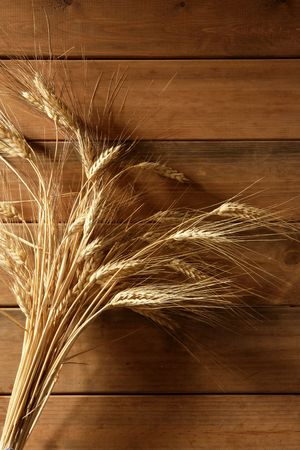 Ear golden wheat spike over traditional old wooden background  photo
