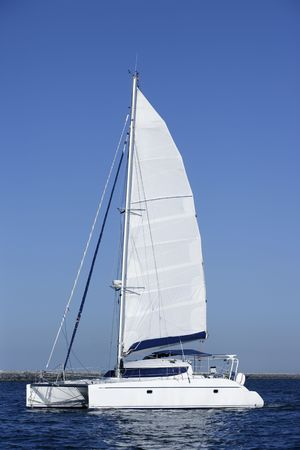 catamaran: Catamaran sailboat sailing blue ocean water on summer day
