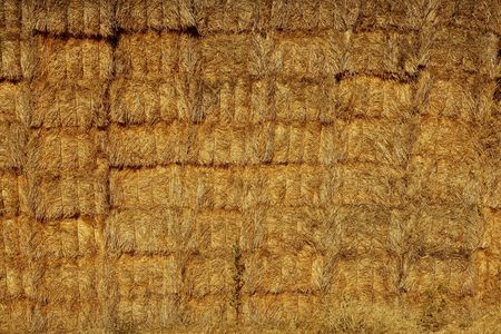 Barn with square shape stack on columns outdoor cereal texture Stock Photo - 5825229