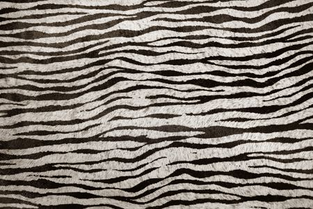 imitation zebra leather animal texture background in black and white photo