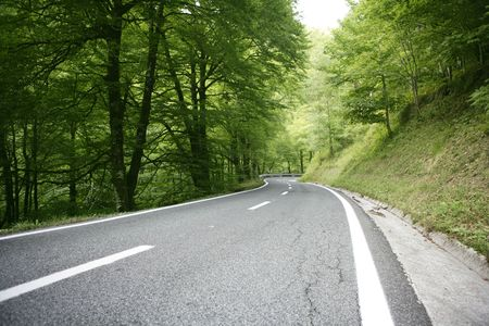 Asphalt winding curve road in a beech green forest photo
