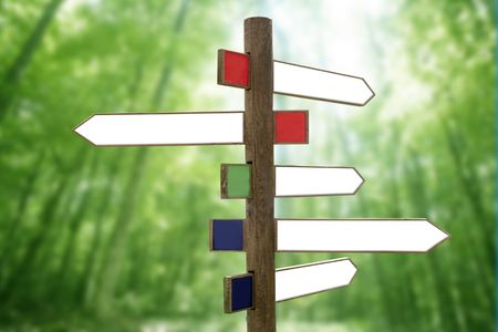 Crossroad wooden directional arrow signs copy space in green forest background Stock Photo - 5995103