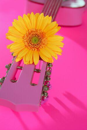 Hippie flower power yellow pink gerbera on guitar still music metaphor photo