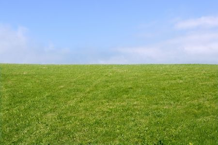 Green meadow horizon and blue sky tranquil landscape scene photo