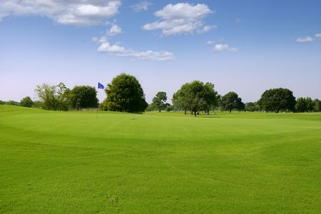 grass field: Green Golf grass landscape in Texas leisure sport outdoor