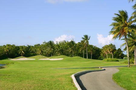 Miami Key Biscayne Golf tropical green grass field palm trees    photo