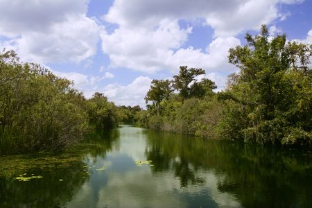 Mangroove river in everglades Florida landscape view photo