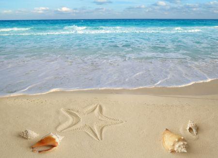 etoile de mer: mer coques �toile de mer sur tropicales sable turquoise des Cara�bes vacances voyage ic�ne