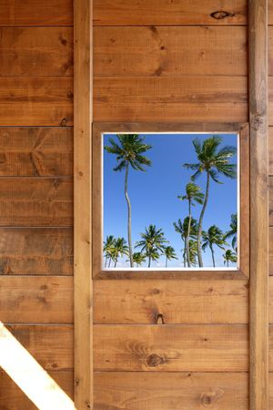 Tropical palm trees view from wooden window house room photo