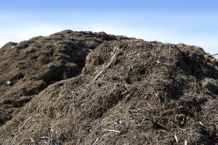 basura organica: Compost monta�a grande al aire libre de reciclaje ecol�gico industria entorno fertilizantes