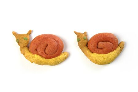 snail shapes yellow orange biscuits  photo