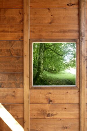 Wooden window jungle green forest view from wood cabin photo