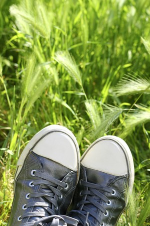 relax metaphor silver shoes having rest on meadow field Stock Photo - 7102340