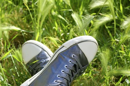relax metaphor silver shoes having rest on meadow field Stock Photo - 7143072