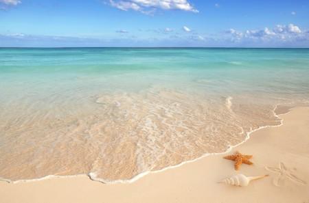 sea shells starfish on tropical sand turquoise caribbean summer vacation travel icon Stock Photo