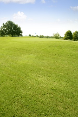 of course: Green Golf grass landscape in Texas leisure sport outdoor