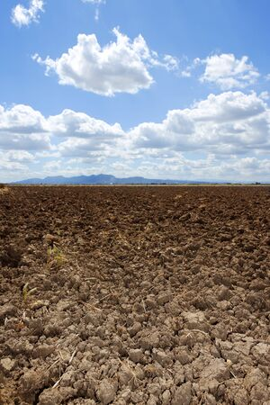 plowed field: plough plowed brown clay soil field blue sky horizon