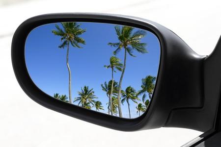 retrovisor: espejo vista Palma tropical �rboles azul cielo coche de visi�n trasera  Foto de archivo