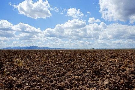the plough: plough plowed brown clay soil field blue sky horizon