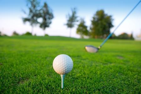 Golf tee bal club driver in groen gras cursus horizon bomen