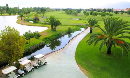 Golf course lakes palm trees green grass aerial view photo