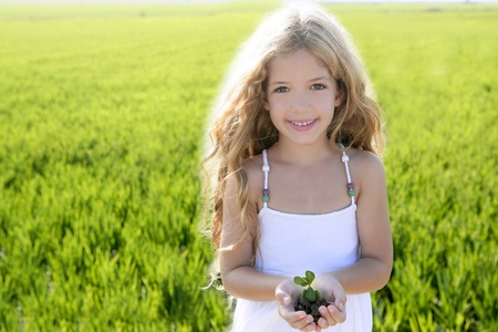 hand holding plant: sprout plant growing from little girl hands outdoor rice field Stock Photo