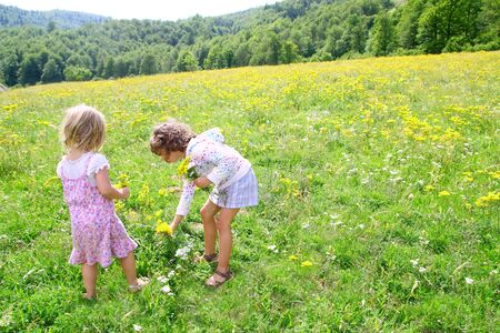 sister girls in meadow playing with spring flowers outdoor photo