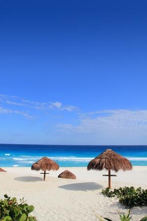 sun roof: Palapa hut beach sun roof turquoise Caribbean