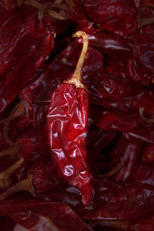 guajillo chili Acacia berlandieri dried pepper from mexico photo